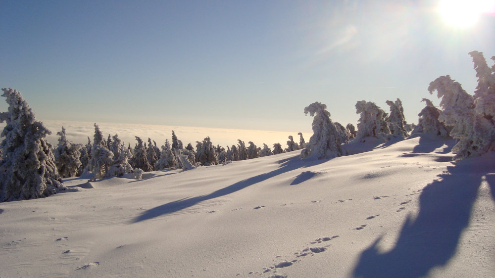 winter-brocken.jpg